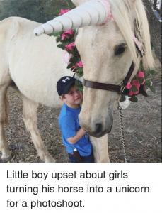 boy upset by unicorn horse
