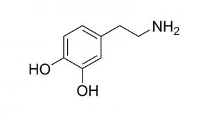 dopamine-