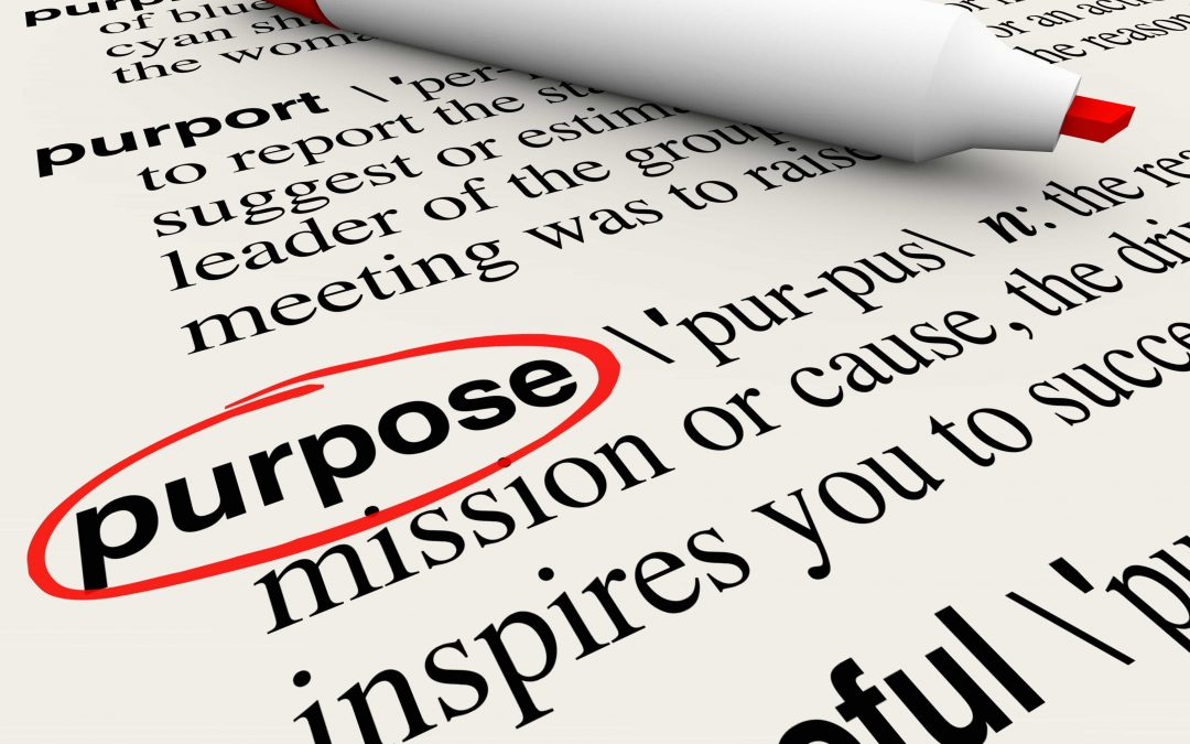Purpose & Cause