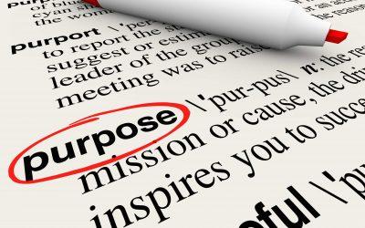 Purpose & Cause