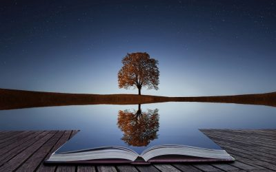 Reflections on a past life